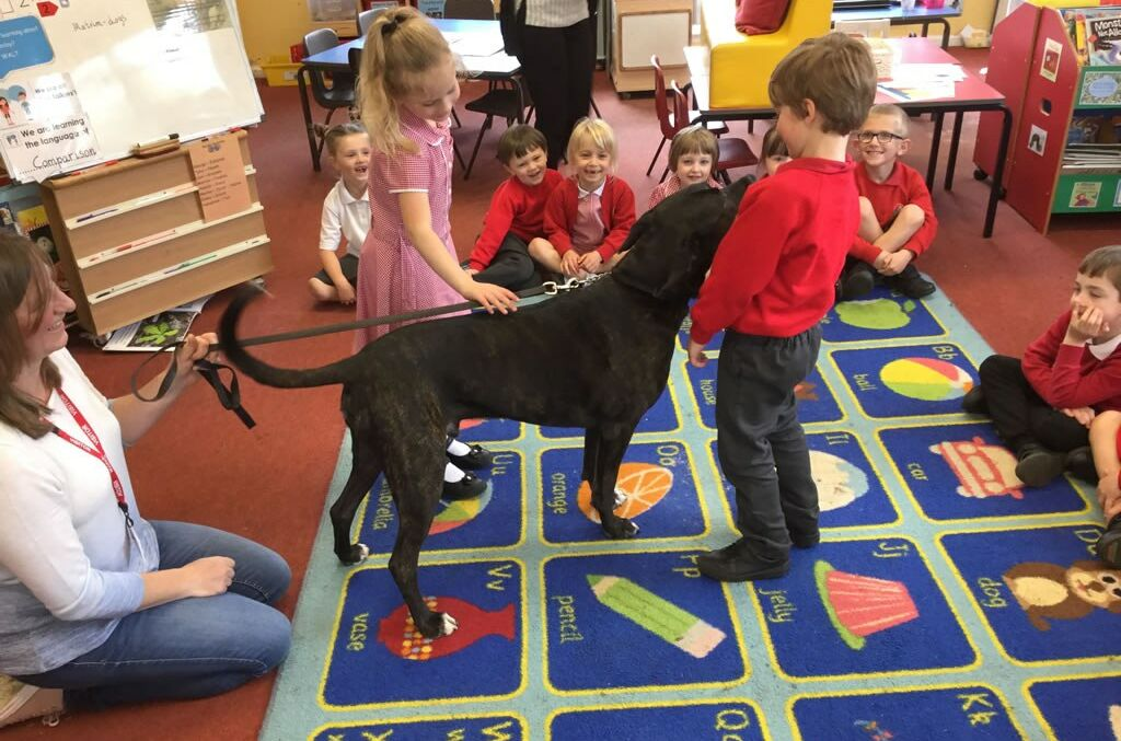 Holly Class welcome Animal Visitors