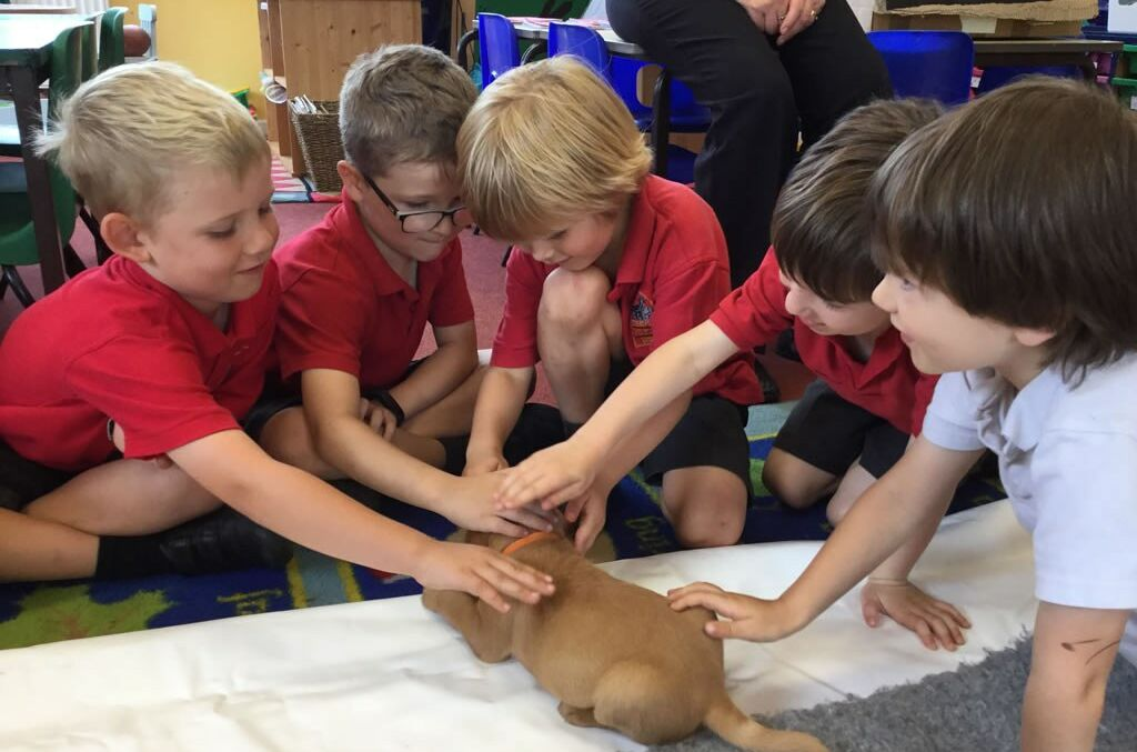 Puppies Visit Holly Class